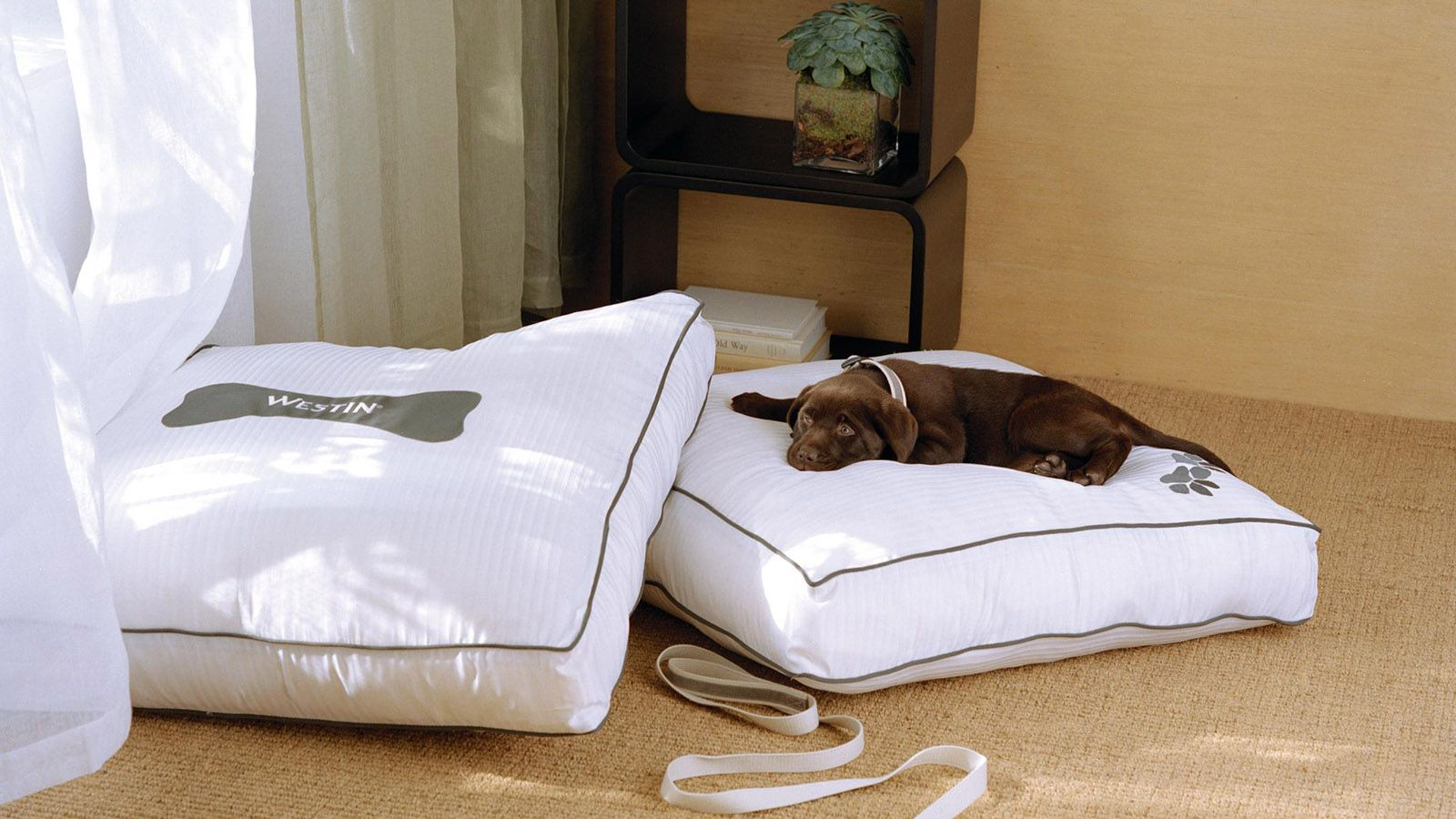 Heavenly® Dog Bed
